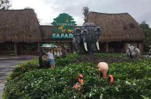 富国岛虽然设施不全,不过原始感很强,酒店边上是野生动物园也是十分受孩子欢迎,越南三宝也不错。算是一种
