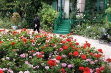 花园花径花不同 人面桃花怎相逢