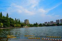 【来芜湖肯定要走一次镜湖公园】 来到芜湖,镜湖公园肯定是你要走一次的,在这里可以简单了解到芜湖铁画,