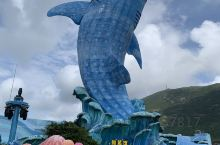 第一次带孩子去长隆海洋王国,被水族馆里的鲨鱼震惊了,海豚表演也非常赞。但是当天真的太热,导致孩子头发