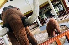 动物园值得一看