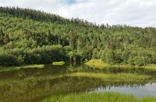 香格里拉最有名的景点,普达措公园一定要五月到十月游览,冬季雪景也可以