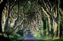 #SEL 上新# 当我对所有的事情都厌倦的时候, 我就会想起你,想起爱尔兰。