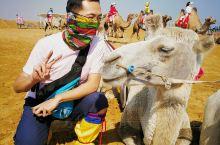 沙漠边缘骑个骆驼,射箭,看看敖包