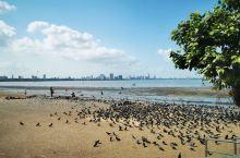 孟买的海岸