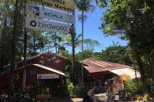 库兰达集市是位于库兰达雨林小镇中的一处热闹的室内小商品市场。这里的建筑有着热带雨林的特点,所售卖的小