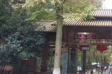 东平国家森林公园崇明