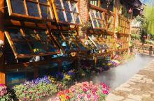 束河古镇,比大研更安静。三坊一照壁是纳西族民居典型的构造布局,小院种花,大院植树,四季花果飘香,有甚