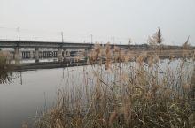 北排河河北 沧州工业用水区  北排河