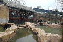 江苏如皋的水绘园,历史悠久的小院,很喜欢推荐大家去看看