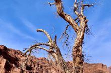 温宿大峡谷(二)哥哥站着等你三千年,妹妹也站着等你三千年 阿克苏·新疆