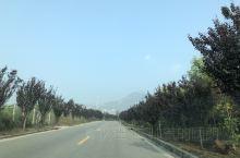 桥山,在曲沃与襄汾之间的栏山山脉东段,是一座雄伟的高山,海拔约1100米。距历史地理学家推断,它是我