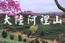 这个春节去哪玩?本向导推荐龙岩市永福樱花园(厦门、漳州、龙岩)均可往返,南方樱花开的比较早,樱花盛开