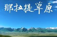 初夏的那拉提草原   那拉提草原是世界四大草原之一,也是新疆最出名的草原之一,自古以来就是著名的牧场