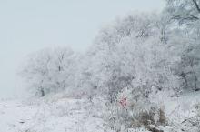雾凇是一种附着于地面物体(如树枝、电线)迎风面上的白色或乳白色不透明冰层。它也是由过冷水滴凝结而