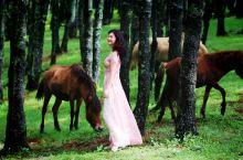 三生三世十里荷花之外的绿野仙踪。提到云南的普者黑,人们熟知的是三生三世十里桃花和万亩荷塘。确实,这里