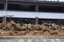 中华文化的缩影,安庆人文,禅源太湖,艺术园林,根雕、奇石、值得一玩!