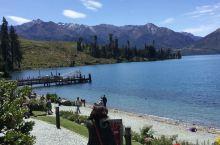 新西兰南岛皇后镇在瓦卡蒂普湖乘坐厄恩斯老号蒸汽船50分钟去瓦尔特高原农场看剪羊毛表演和吃自助餐,享受
