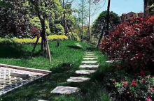 等我老了  我想有一个这样的花园  把关于我们的过去  那些沉沉浮浮的日子  在这里一 一回忆,阅读