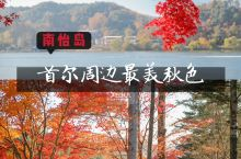 首尔周边最美秋色 |  五彩森林 南怡岛   不看后悔系列!  上南怡岛先得坐5分钟的游船,还在路上
