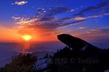 我们在泰山顶上看出太阳。在航过海的人,看太阳从地平线下爬上来,本不是奇事;而且我个人是曾饱饫过红海