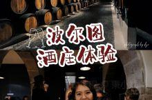 波尔图特色体验,在200多年的桑德曼酒庄品酒 波尔图有一个特色玩法就是去酒庄参观,老城对岸有很多酒庄