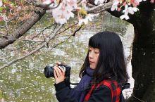 """全日本最独特的小城,""""江南水乡""""🆚欧洲宫殿 🔆 在日本冈山县南部,有这样一座古城。 它似乎名不见经传"""