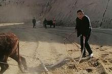 黄土高原一米脂一农耕一犁地