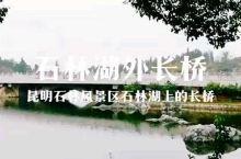 云南昆明石林风景区里石林湖的长桥。