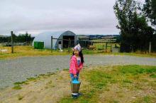 带着孩子,在新西兰的农场里干活,会是一种怎样的体验?  去年的春天(新西兰的初秋)我们来到了由米和麦