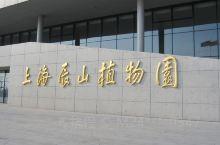 在上海的一家很大的植物园,适合带小朋友去逛逛看看。里面的景色非常漂亮,各种植物应有尽有的,花草数不胜