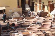 """菲斯的古城也称麦地那(Medina),古城内最著名的地方叫""""鸽子屎皮革染坊""""。这个皮革染坊(Chao"""