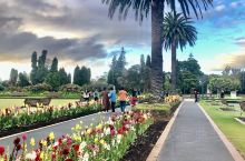 打卡罗托鲁瓦政府花园
