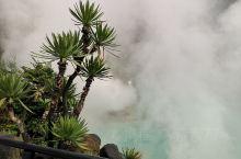 日本九州有着全世界最好的温泉资源,别府地狱是九州之旅必去之地。别府八大地狱各有千秋,风景各异,可以购