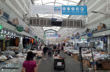 哈喽~我在韩国中部海边小城市---昌原市(창원시)~这里有很大的鱼市场叫马上鱼市场(마산어시장)可以