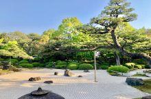 由志园。位于日本岛根县松江市大根岛,以种植牡丹而闻名。园内以翠绿植物配以回游式山水庭园,可以环廻游览