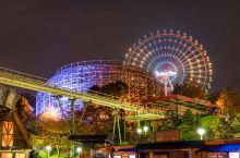不容错过的大阪枚方公园冬季梦幻灯光秀