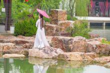 在常熟游玩的第一个景点来到了尚湖,相传因姜太公在此隐居钓鱼而出名,坐着观光车慢慢的行驶在尚湖边上,碧