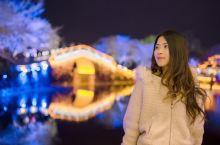 无锡鼋头渚 我的春天是从鼋头渚樱花开始的 当夜幕降临,鼋头渚景区内的长春桥附近灯光亮起,成片的樱花树