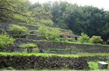 石见银山 石见银山最早的文字记录可以追溯到1309年,但真正繁荣起来却是在16世纪后半,自海外引入精