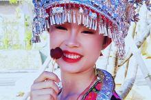 靖州杨梅节