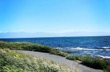 一座拥有许多海鸥与多功能用途的公园。   克洛弗点公园是我和闺蜜在加拿大第一个观赏的景点。在这里可以