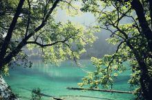 """""""黄山归来不看山,九寨归来不看水。""""不愧是有着""""世界自然遗产""""和世界生物圈保护区""""的九寨沟,真是令人"""