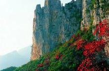 典藏旧三峡:神奇壮丽的巫峡 巫山蕴云雨,宋玉遗神话。 神女虽无恙,峡谷变优雅。