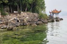 看得见水下水草的抚仙湖