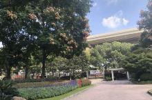周末加班,难得空闲,好久没有到彭浦公园里去了,记得上次去的时候是樱花盛开时,大概已有7个月了。天气渐