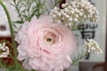 从幼儿园1998年看樱花看到现在,毕业6年,工作中时常陪朋友,同事,每年3-4月回武大看樱花,记得原
