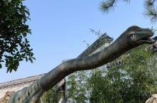 """上饶首个恐龙乐园!老板娘在广州十余年刚回家乡建设的,位置在""""文成塔民俗文化园""""直接导航即可,停车免费"""
