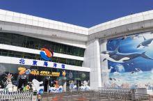 """""""北京海洋馆"""",坐落在北京动物园内北端,是亲子游最佳选择之一。 """"海洋馆"""",我印象最深的是馆内多处超"""