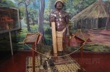 玛瑙斯市(Manaus)为巴西亚马逊州首府,地处黑河和索里芒斯河(亚马逊河支流)交汇处,面积1433